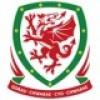 Wales EM 2020 Drakt